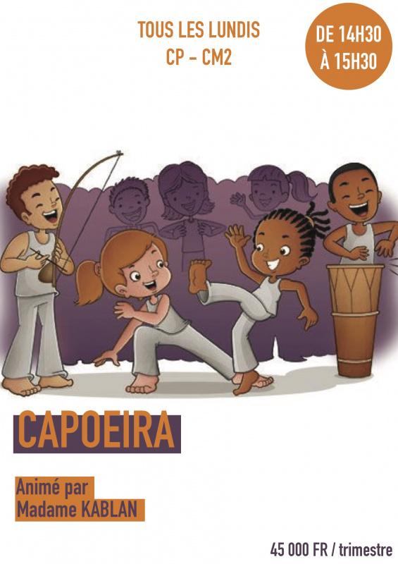 11033-1616151411-capoeira.jpg