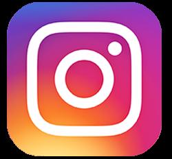 1193-1606818772-instagramlogo.png